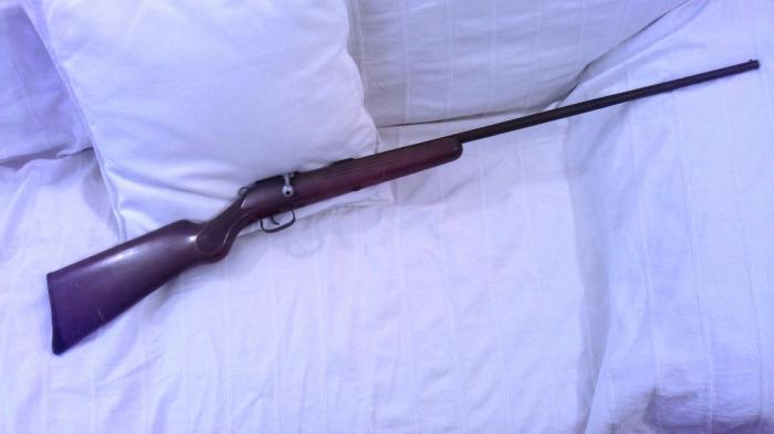 Carabina Manu Arm