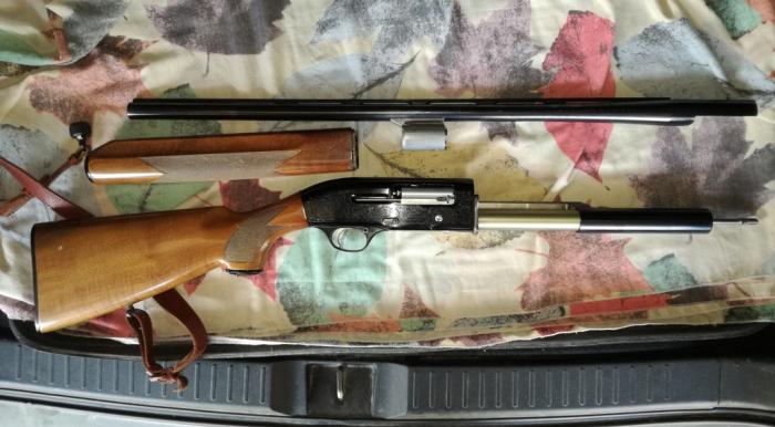 Beretta 302