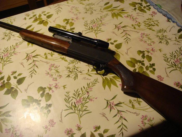 carabina 22LR