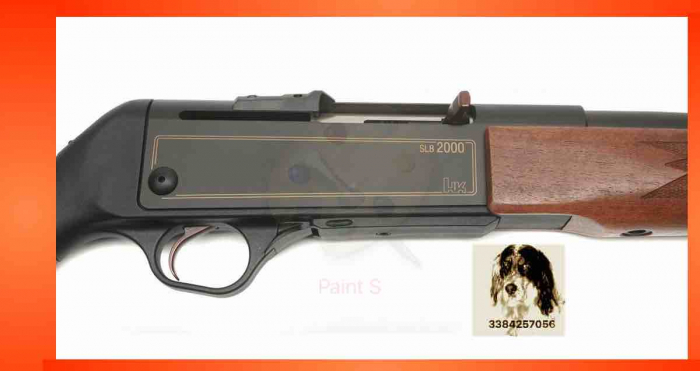 HK SLB 2000