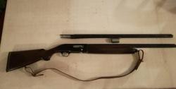 Beretta semiautomatico A 301