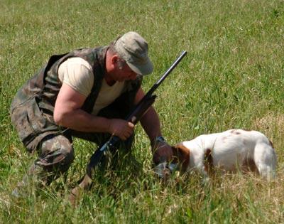 caccia e calendari venatori marche - approvato il calendario venatorio