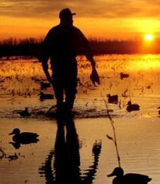 Proroga in Lazio per la caccia a 12 specie migratorie