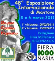Esposizione Internazionale Canina di Gonzaga (Mantova) 5/6 Marzo 2011