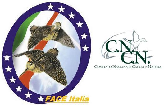 FACE Italia - CNCN