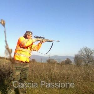 Caccia al Cinghiale: L'assessorato alle politiche agricole vuole varare un nuovo regolamento per rendere la caccia migliore.