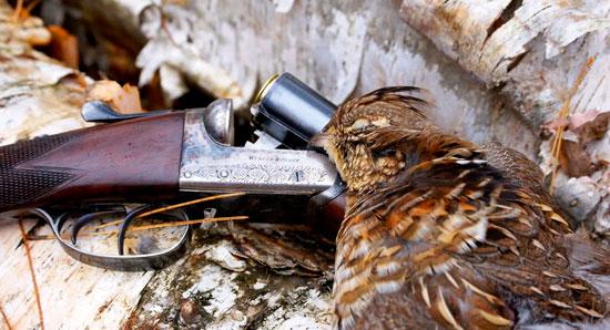Fucili da caccia e loro manutenzione facile ma sempre for Costo della costruzione del fucile da caccia