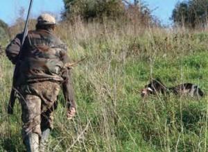 incidente di caccia