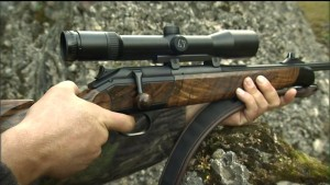 Atteggiamento di caccia