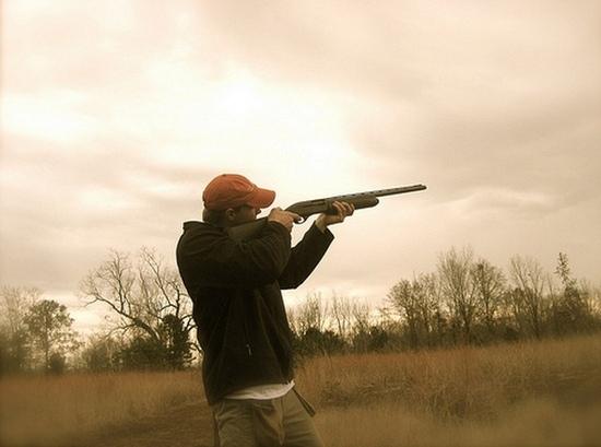Sanzioni in materia di caccia