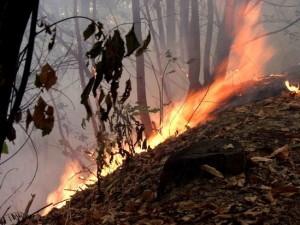 A fuoco un capanno di caccia