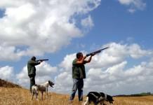 Chiusura della caccia