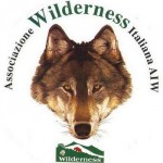 1439543833-1725169644-wildernesslogo.jpg