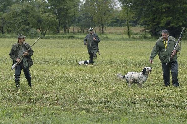 Cacciatori con cani