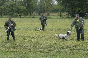 1439545186-656331535-caccia-cacciatori-con-cane.jpg
