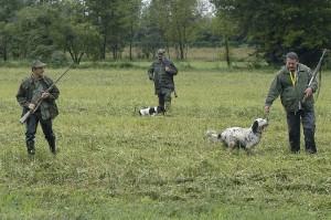 prove di caccia su selvaggina e quaglie