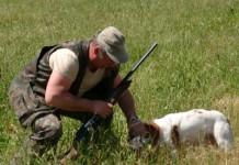 caccia & cacciatori