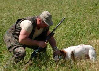caccia in Toscana - calendario venatorio 2015 - 2016