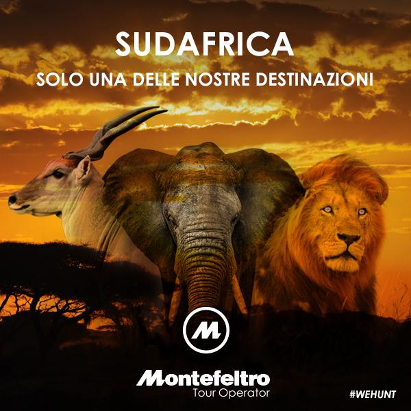 caccia_montefeltro-sud-africa_2016