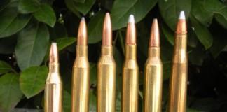 munizioni caccia canna rigata