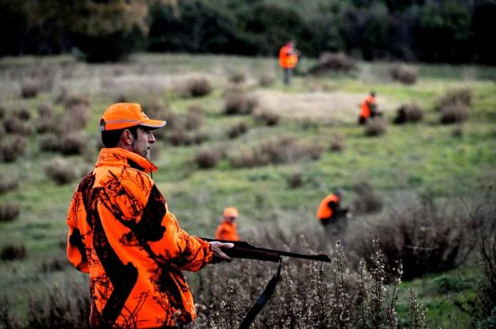 Zone di caccia al cinghiale