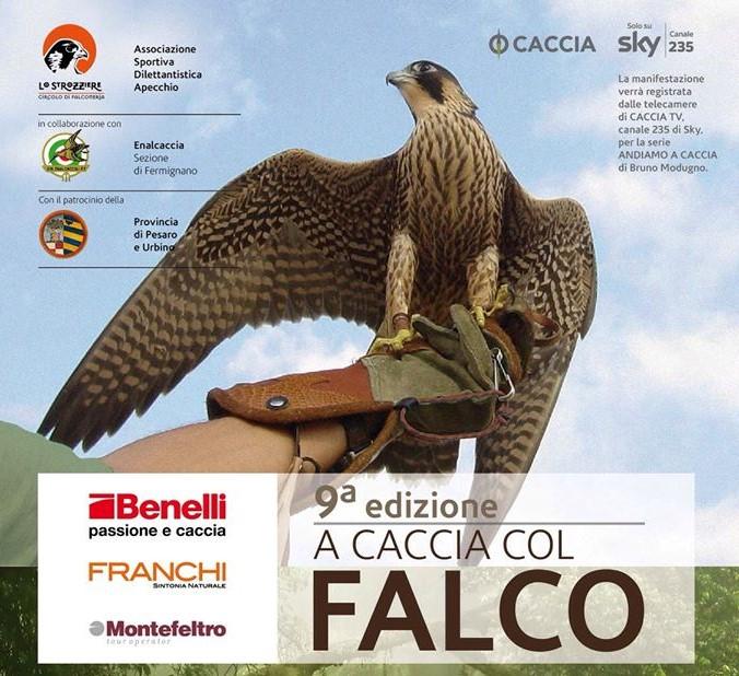 A caccia col falco