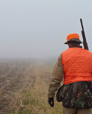 caccia e politica
