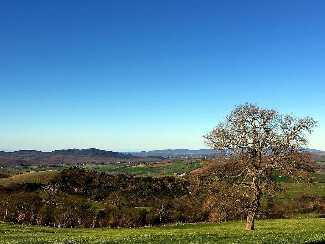 paesaggio_toscana_caccia