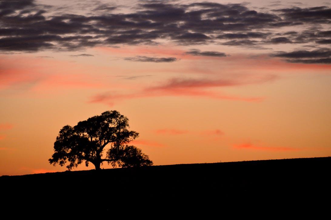 Un fantastico tramonto rosso fuoco fa da cornice all'uscita serale
