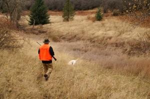 Legge friulana sulla caccia