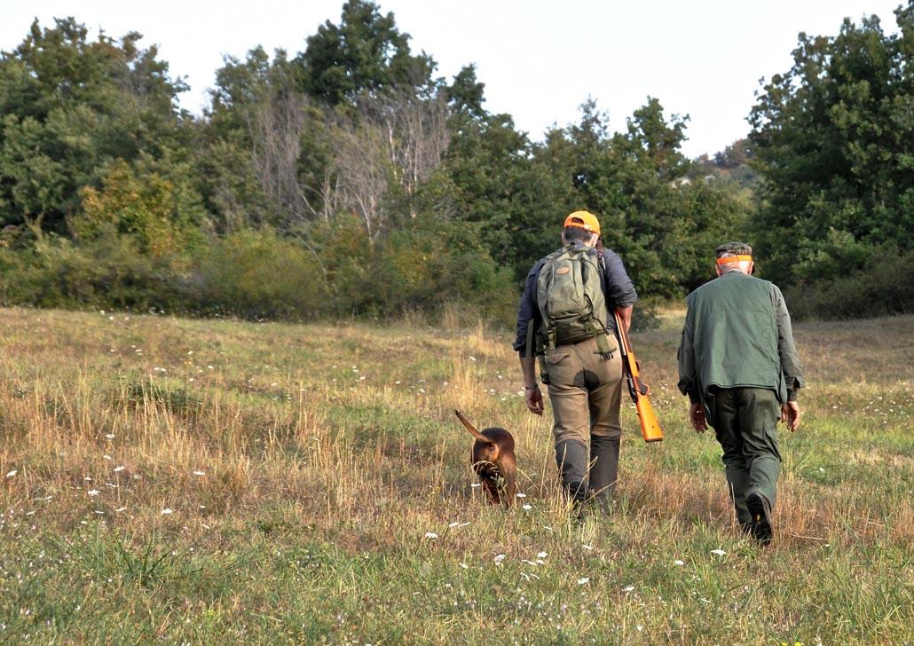 La verifica dell'esito del tiro è un dovere per il cacciatore