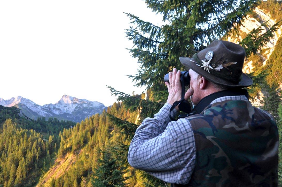 Alle prime luci dell'alba cerchiamo d'individuare gli animali sul versante opposto