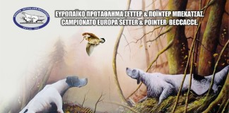 Europei Pointer a Beccacce