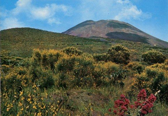 Vesuvio - Parco Nazionale
