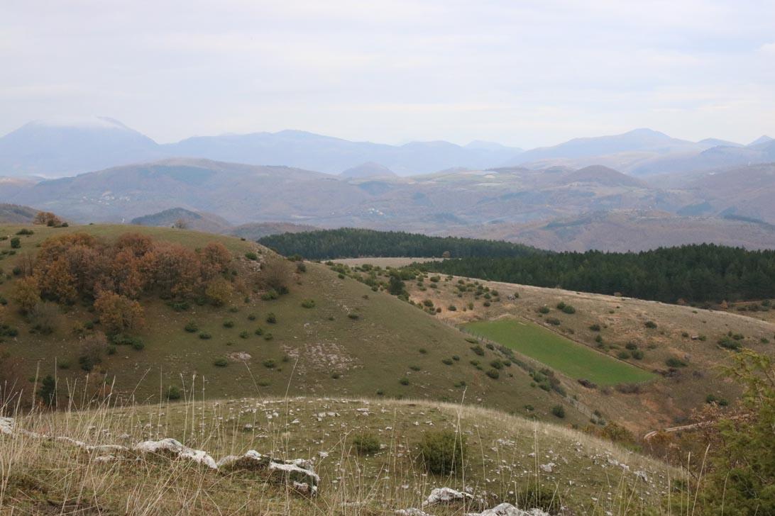 CacciaPassione n.20-In questi territori di montagna sia il segugi che il setter possono esprimersi al meglio