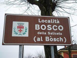 Bosco della Saliceta
