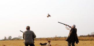 Mogli dei cacciatori
