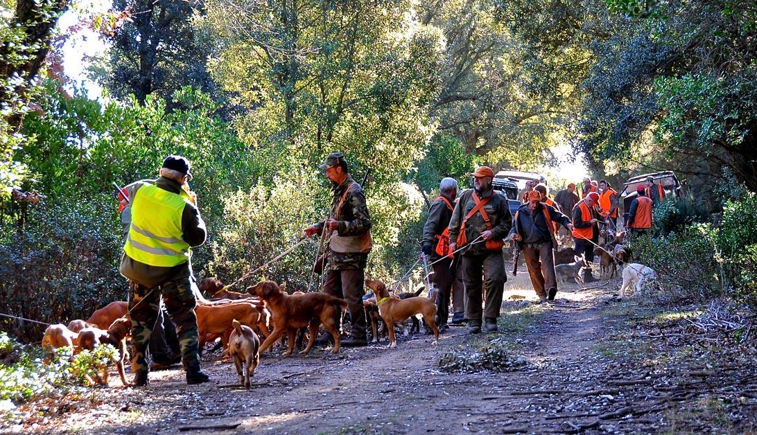 I canai si apprestano alla sciolta dei propri ausiliari