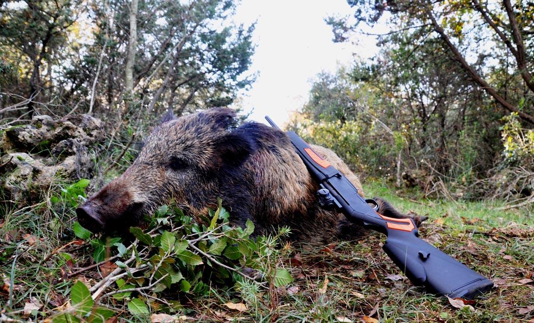 caccia in Campania
