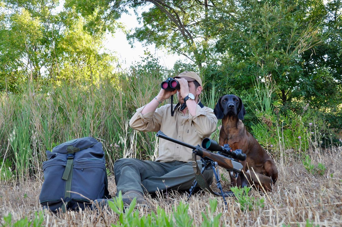 caccia al capriolo