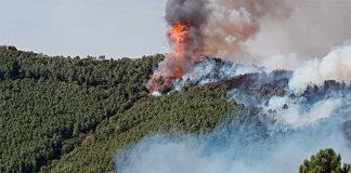 Incendio Monte Serra - Pisa