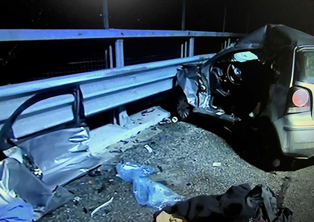 incidente autostrada cinghiali