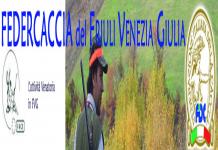 FIDC Friuli Venezia Giulia