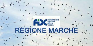 Calendario Venatorio 2020 Puglia.Calendario Venatorio 2019 2020