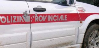 Polizie Provinciali