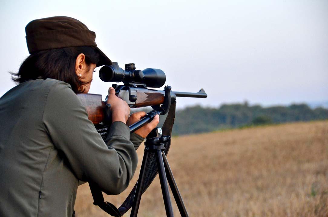 caccia di selezione al capriolo