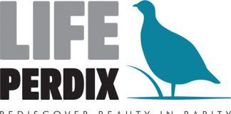 Life Perdix