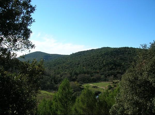 Monti Livornesi