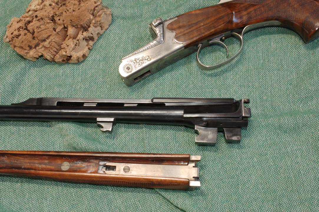 kipllauf falco armi alpine 1
