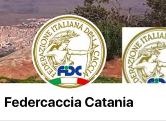 Catanese